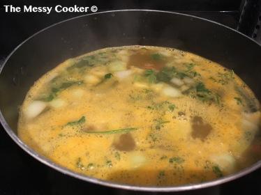 matzah soup 6